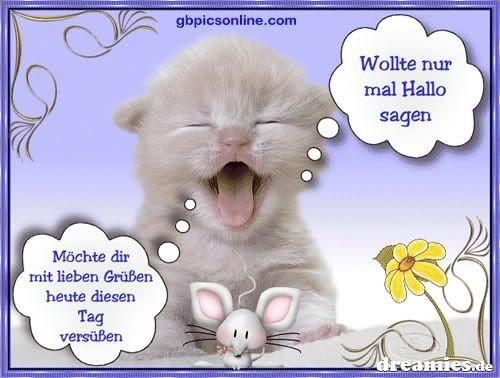 An den Beitrag angehängtes Bild: http://img21.dreamies.de/img/327/b/td0bqn2xqyw.jpg