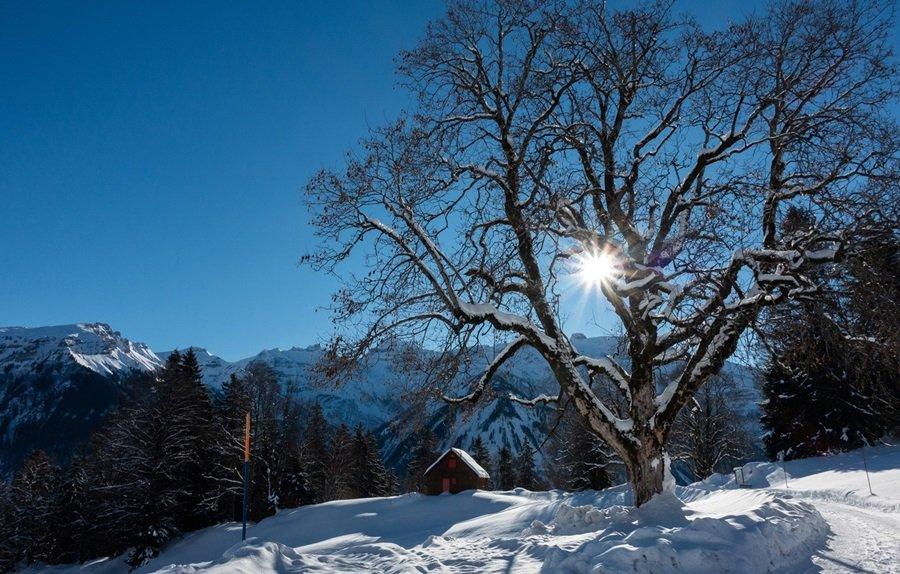 Zimski pejzaži-Winter landscapes - Page 4 Cf9qkn69gty