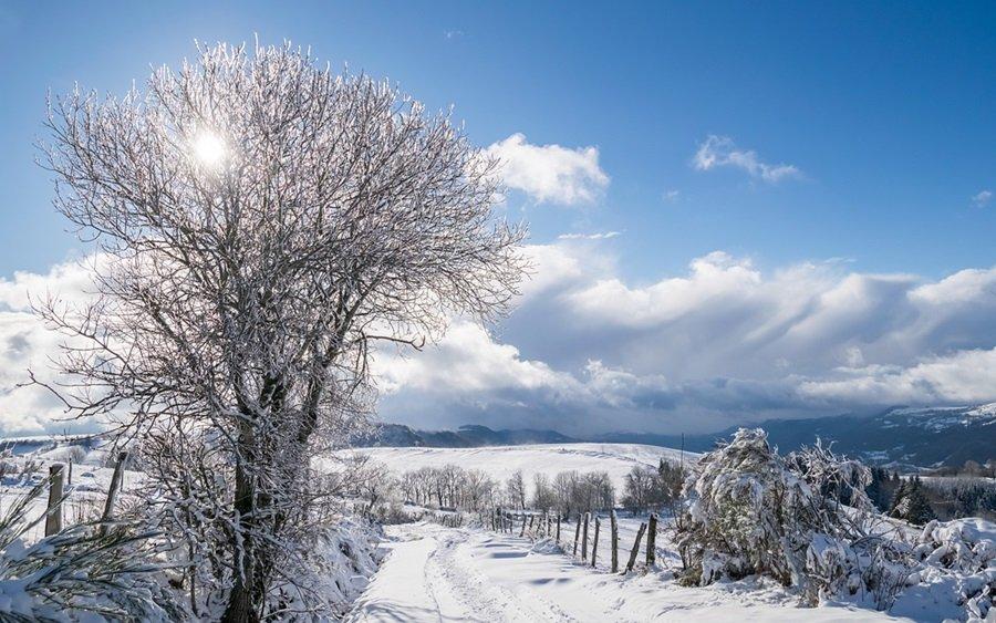Zimski pejzaži-Winter landscapes - Page 5 Hkltrjxeog3