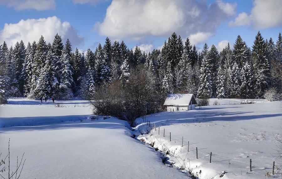 Zimski pejzaži-Winter landscapes - Page 4 32kyqz3pbfe